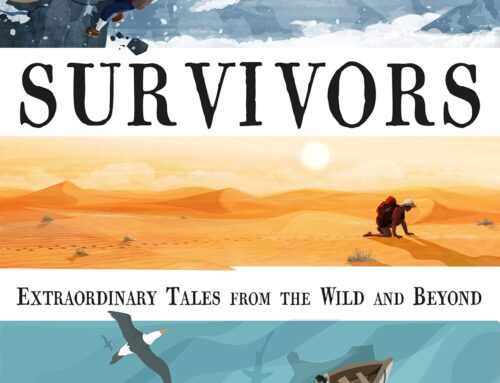 Survivors – David Long