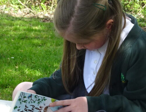Class 3 reading in the sunshine!
