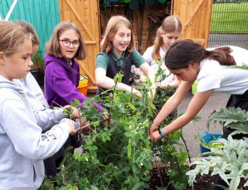Gardeners' World!